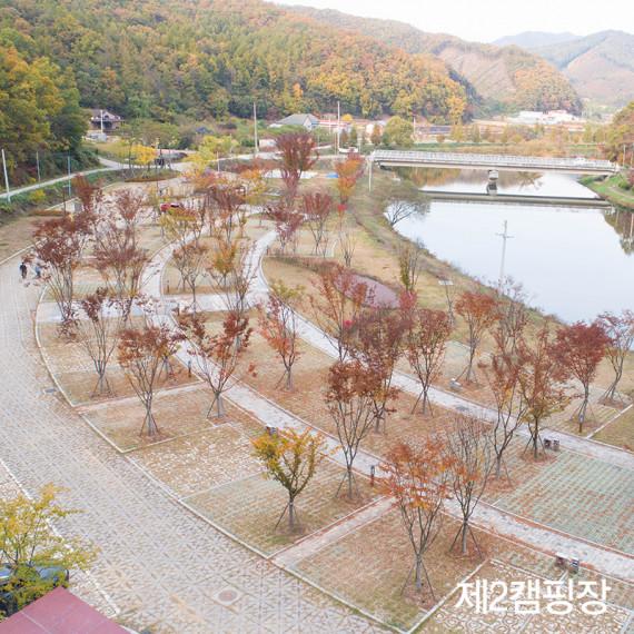 음성 원남테마공원캠핑장