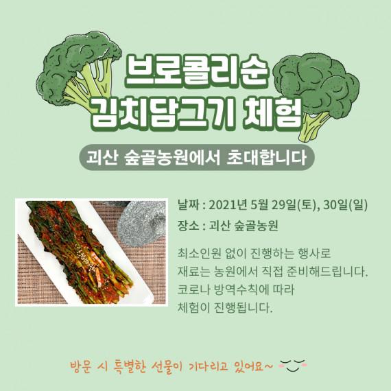 괴산 숲골농원   브로콜리순 김치담그기